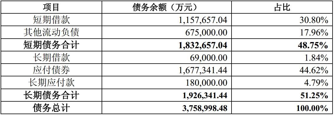 5. 康美药业2018年末债务结构.jpg